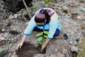Personal del IDAAN en Chiriquí participa en jornada de reforestación